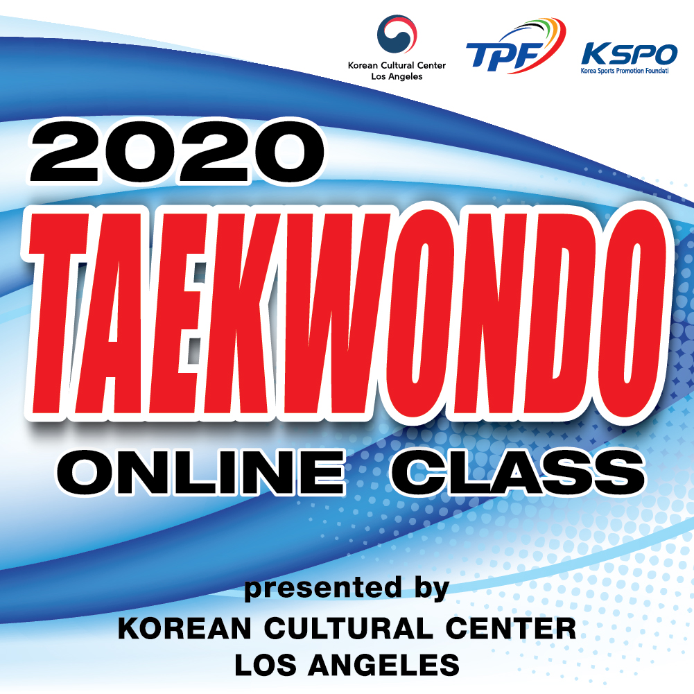 2020  Online Taekwondo Class : EP 13. Demonstration of Basic Jump Kicks